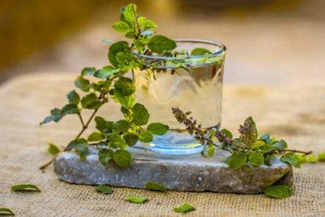 Health Benefits of Tulsi: ৰাতিপুৱাই এনেদৰে খাওক তুলসী পাতৰ পানী, নিজ অভিজ্ঞতাৰে জানিব ই কিমান লাভদায়ক