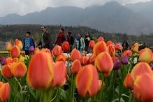 90 एकड़ में फैला है यह अनोखा गार्डन, जहां एक साथ खिलते हैं 13 लाख फूल