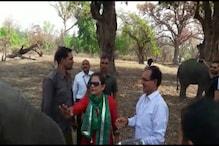 VIDEO: बांधवगढ़ नेशनल पार्क में दिखा शिवराज का अलग अंदाज