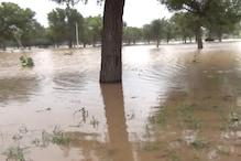 बारिश के कारण अपनी ही आंखों के सामने फसल बर्बाद होती देखने को मजबूर किसान