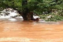 बांध से पानी छोड़े जाने के कारण तीन लोग नदी में बहे, ग्रामीणों ने बचाई जान