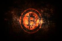 ...तो Bitcoin भी Tulip गांठों जैसे खत्म हो जाएगा!