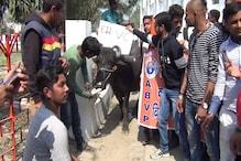 बिहार विश्वविद्यालय में चुनाव नहीं होने से नाराज छात्रों ने किया अनोखा प्रदर्शन