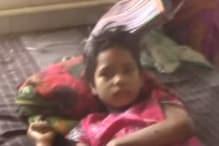 घर में घुसकर जंगली सुअर ने किया बच्ची पर जानलेवा हमला, अस्पताल रेफर