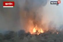 VIDEO: वन विभाग की नर्सरी में लगी भीषण आग