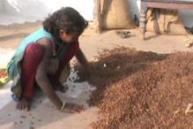 आदिवासियों से सरकार ने नहीं की इस बार वनोपज की खरीद,औने-पौने दाम बेचने को हैं मजबूर