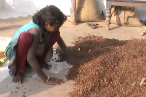 अपनी महुआ की फसल के साथ एक आदिवासी महिला