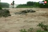 VIDEO: सिरमौर में नदी नाले उफान पर, दूसरों जिलों से संपर्क टूटा