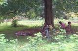 VIDEO:एंबुलेंस ना मिलने पर खाट पर रख तीन किलोमीटर दूर अस्पताल तक लाए शव