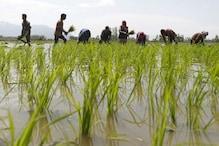 बापू की कृषि तकनीक से रूबरू होंगे चंपारण के किसान, चकिया में होगा किसान मेले का आयोजन