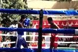 VIDEO: शिमला के खिलाड़ियों के नाम रही बॉक्सिंग प्रतियोगिता, मंडी ने भी दिखाया दम