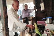 PHOTOS: चायवाले का पक्का दोस्त बना तोता, रोजाना करने आता है ब्रेकफास्ट और लंच