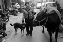 Human Story : 'मुझे जानवरों से नहीं, इंसानों से डर लगता है'