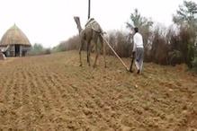 जैविक खेती कर खुद अपने नाम का गेहूं-बाजरा बेचेंगे किसान