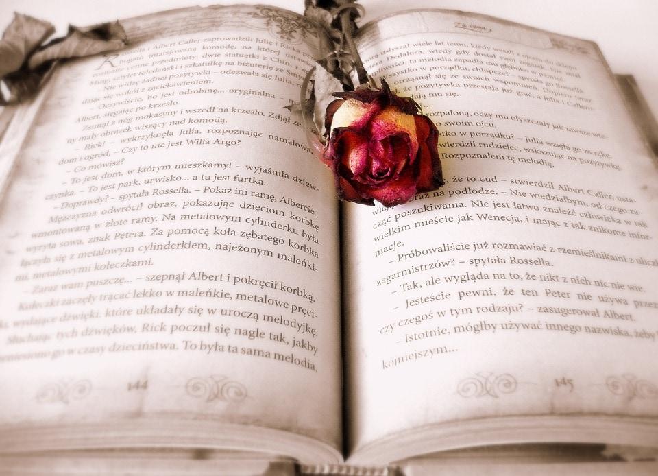वे बातें जो आपको भुलक्कड़ होने के बावजूद बेहतर किताब-प्रेमी बना सकती हैं.हर किताब और हर किताब का हर पन्ना एक समान दिलचस्प नहीं होता. हम वहीं अटकते हैं, जहां हमारी सोच को किसी तरह का झटका लगता है. ऐसे में आगे बढ़ जाने की बजाए उस जगह में हाशिए पर अपनी भी बात लिखें. इसे मार्जिनेलिया कहते हैं. ये तरीका पुराना लेकिन पढ़ने और याद रखने के लिए बेहद कारगर है.