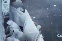 लेडीज गैंग ने इस तरह शटर तोड़कर मेडिकल शॉप में की चोरी, देखें VIDEO