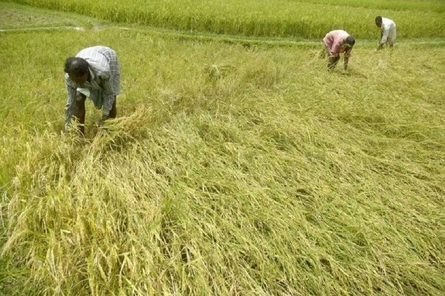 प्रधानमंत्री किसान सम्मान निधि योजना (PM Kisan Samman Nidhi Yojana) के तहत 2,000 रुपये की पहली किश्त पाने वालों में कई ऐसे लोग भी है जिनका खेती से कोई लेना देना नहीं है. ऐसे में सरकार इन लाभार्थियों से पैसा वापिस लेने की तैयारी कर रही है. इसके लिए केन्द्र सरकार ने सभी राज्यों के मुख्यों सचिवों को चिठ्ठी लिखकर इनसे पैसा वापस लेने के निर्देश दिए है.