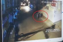 VIDEO : मंदसौर में शोरूम से 20 लाख रुपए के नए मोबाइल चोरी