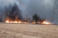VIDEO: बिजली के तार में स्पार्किंग से आधा दर्जन किसानों की गेहूं की फसल जली