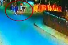 CCTV: देखें अपहरणकर्ता को कैसे चकमा देकर भाग निकले बच्चे