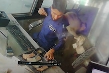 बंदर लूट कर ले गया 'नोटों' की गड्डियां!