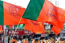 बीजेपी की जीत के बाद डॉ. रमन सिंह का बयान