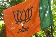 BJP की किस रणनीति के तहत मंत्री बनीं रेणुका सिंह?