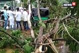 गुमला में आंधी के चलते गिरे कई पेड़ और बिजली के खंबे