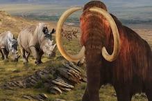 धरती से 26 करोड़ साल पहले भी बड़े पैमाने पर विलुप्त हुए थे जीव: अध्ययन