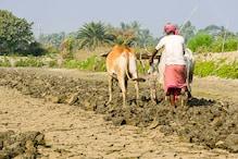 'आत्मा स्कीम' से दोगुनी होगी किसानों की आय, जानिए इसके बारे में सबकुछ