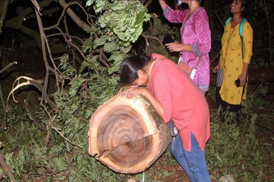 सुप्रीम कोर्ट (Supreme Court) के ताज़ा निर्देशों के मुताबिक मुंबई स्थित आरे के जंगल (Aarey Forest) के हज़ारों पेड़ काटे जाने पर रोक लगा दी गई है. एक याचिका पर सुनवाई के बाद सुप्रीम कोर्ट ने ये निर्देश दिए लेकिन इससे कुछ दिन पहले तक मेट्रो कार शेड (Mumbai Metro Project) के लिए काटे जा रहे आरे के पेड़ों को बचाने के लिए लोग सड़कों पर उतरे और कटे पेड़ों से लिपटकर रोते देखे गए. भारत (India) में ये दृश्य कई बार पहले भी देखे गए हैं. आपके लिए जानना ज़रूरी है कि पेड़ों के लिए कब कब लोग सरकारों के खिलाफ गए, क्या नतीजे रहे और पेड़ों की जान बचाने के लिए कितनी जानें दी गईं.
