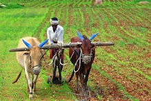 'जीरो बजट खेती' से 5.78 लाख किसानों ने की कमाई! जानिए इसके बारे में सबकुछ
