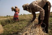 KCC: मोदी सरकार अब किसानों को बिना गारंटी देगी 1.60 लाख रुपये का लोन