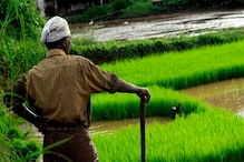 1.16 करोड़ किसानों को क्यों नहीं मिल रहा PM-किसान सम्मान निधि स्कीम का पैसा?