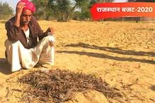 Rajasthan Budget 2020: टिड्डी हमले से परेशान किसानों को गहलोत देंगे राहत!
