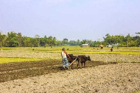 मोदी सरकार की स्वायल हेल्थ कार्ड स्कीम से किसानों को क्या मिला?