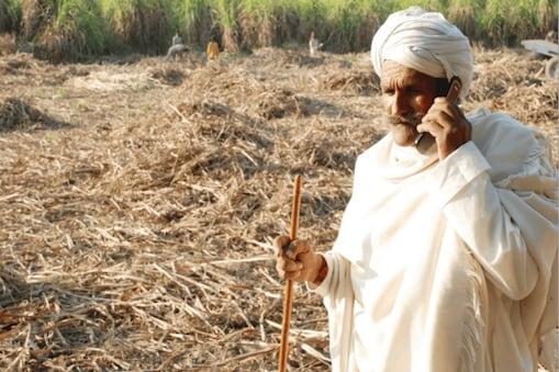 गन्ना किसानों के लिए खुशखबरी! चीनी कंपनियों को राहत देने पर सरकार कर रही विचार