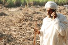 UP: गन्ना खरीद के नए फरमान से बढ़ी लाखाें किसानों की मुसीबत, विपक्ष हमलावर