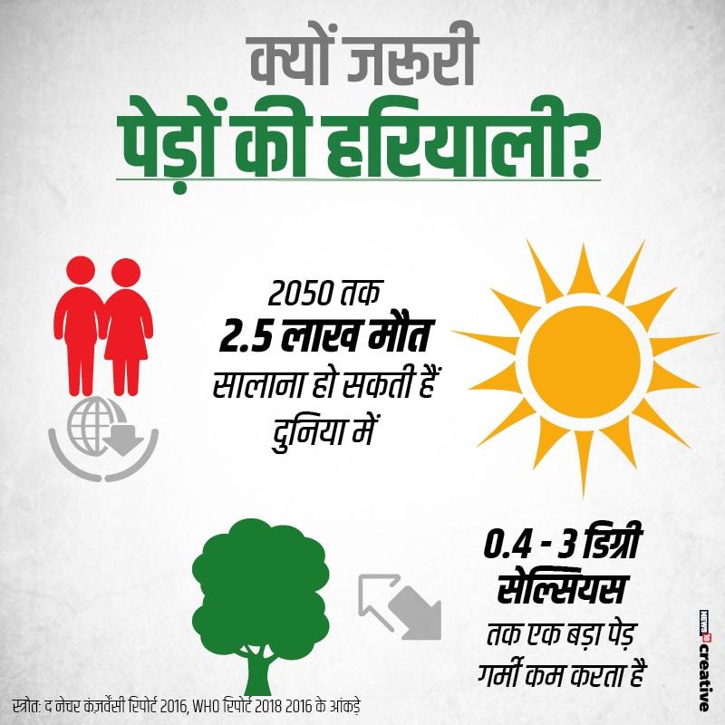 साल 2050 तक बढ़ती गर्मी और ग्लोबल वॉर्मिंग से 2.5 लाख लोगों की मौत हो सकती है. क्या आप जानते हैं कि एक पेड़ 0.4-3 डिग्री सेल्सियस गर्मी पैदा करता है.