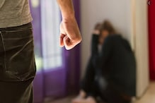 बरेली: Lockdown में बढ़ी घरेलू हिंसा की घटनाएं, हाईकोर्ट पहुंची निदा खान