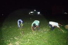 CM नीतीश के गृह जिले में टॉर्च की रोशनी में किसान क्यों तोड़ रहे सब्जियां ?