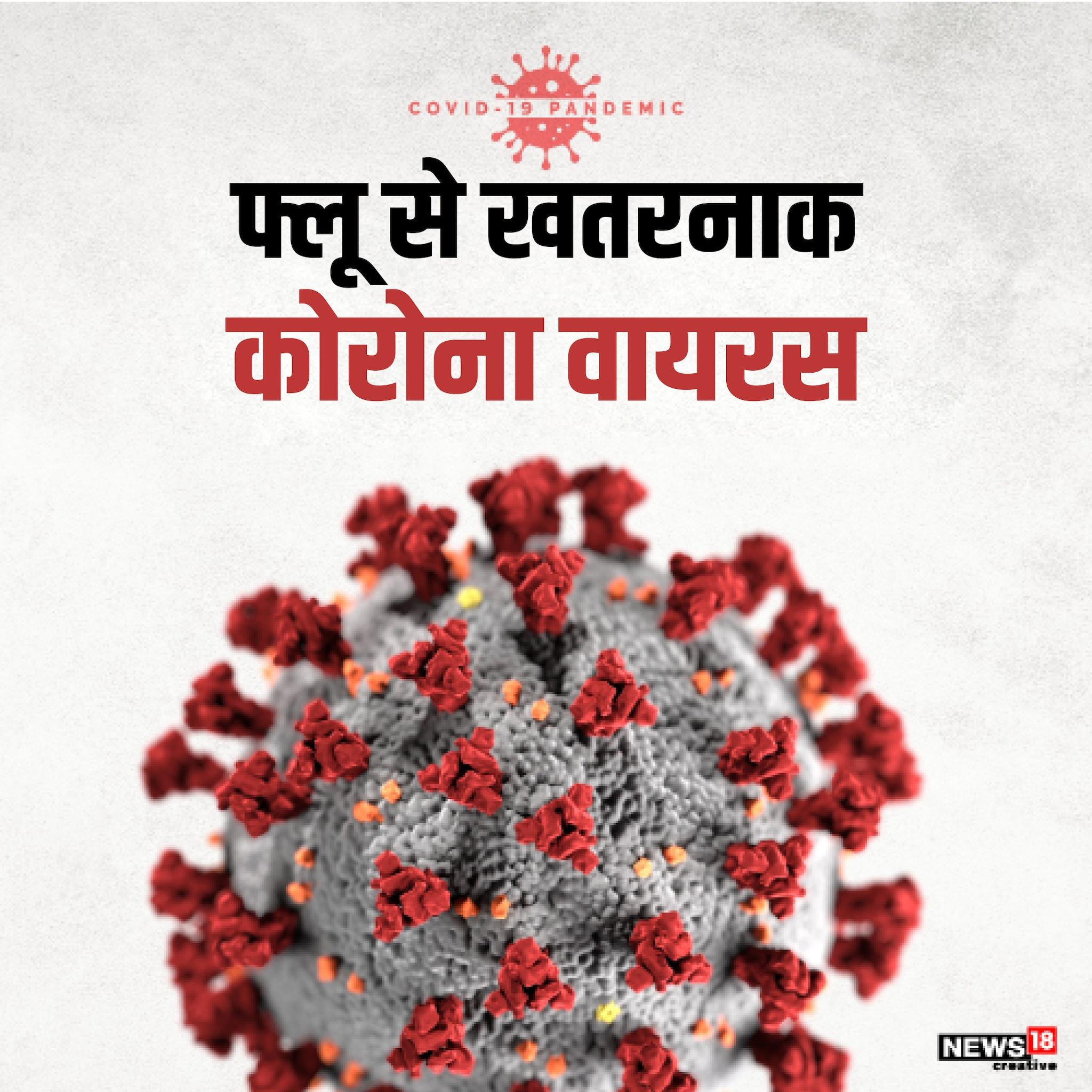कोरोना वायरस (COVID-19) ने पूरी दुनिया के सैकड़ों देशों को अपनी चपेट में ले रखा है. इन खतरनाक वायरस से संक्रमित लोगों (Corona infection) की संख्या 10 लाख से ज्यादा पहुंच चुकी हैं, जबकि 50 हजार से ज्यादा की मौत हो गई है. जानिए कैसे कोरोना वायरस दूसरे वायरसों से ज्यादा खतरनाक है?