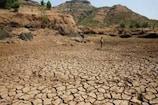 झारखंड के 55 प्रखंड सूखाग्रस्त घोषित, 333 मिलीमीटर दर्ज हुई थी वर्षा