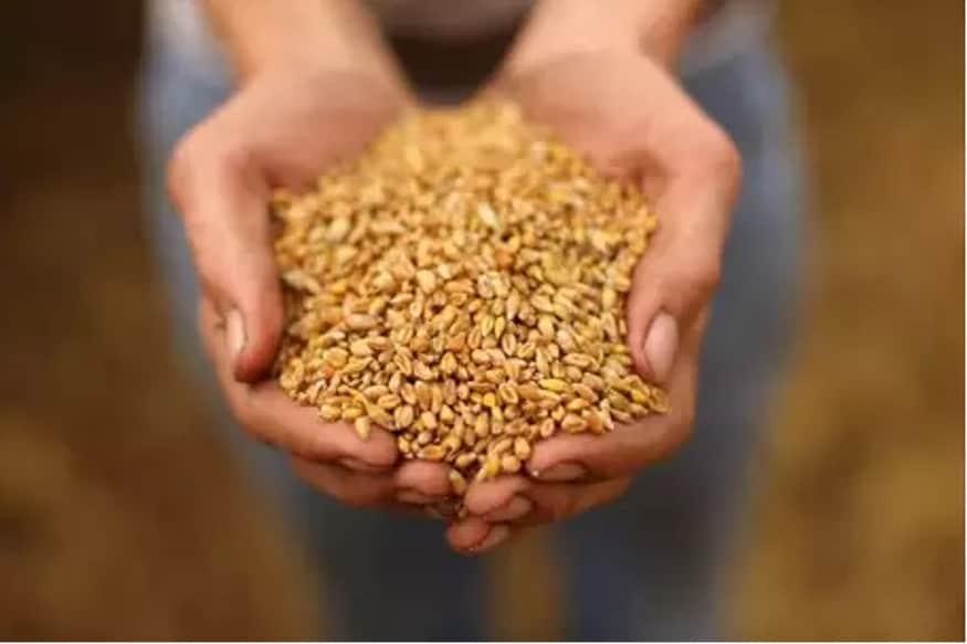Modi government, wheat procurement, Manmohan singh government, COVID 19, kisan news, farmer news, wheat procurement in up, MSP-Minimum Support Prices, मोदी सरकार, गेहूं खरीद, मनमोहन सिंह सरकार, कोविड-19, किसान समाचार, यूपी में गेहूं खरीद, एमएसपी, न्यूनतम समर्थन मूल्य