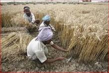 भोपाल: कृषि मंत्री कमल पटेल का आरोप- कांग्रेस ने किसानों के साथ की धोखाधड़ी
