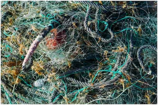 महासागरों में फैलने वाले कुल कचरे का आधा हिस्सा मछली पकड़ने में इस्तेमाल होने वाले जाल और रस्सियों का होता है.
