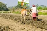 इन किसानों को देना देना पड़ेगा 4 की जगह 7 फीसदी ब्याज, सिर्फ 47 दिन हैं बाकी