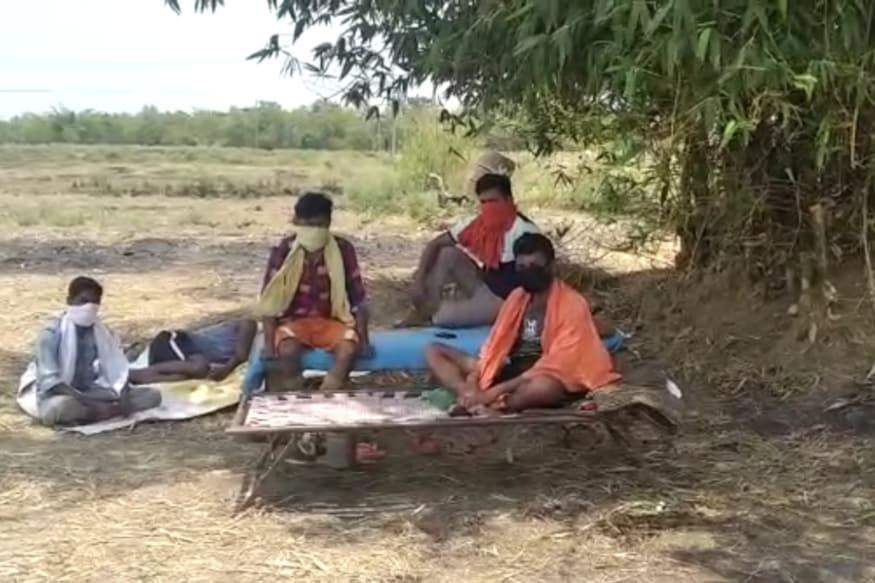 COVID-19, Bihar News, Corona Virus, Quarantine Center, migrants camped under trees to save villagers, Rohtas, रोहतास, बिहार, क्वारंटाइन सेंटर, पेड़ के नीचे डेरा, प्रवासी मजदूर, श्रमिक