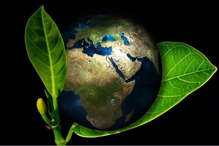 कब है पर्यावरण दिवस