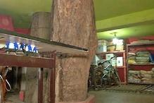 PHOTOS: अरे ये क्या! 126 साल पुराने पीपल के पेड़ में घर है या फिर घर में पेड़?